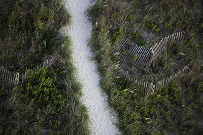 "30"" x 20"" Archival Inkjet Print. Color photograph. Aerial view of beach path. Tall, green grass, sandy path, strip of carpet, falling fences"